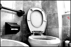 Una Persona è Entrata in Casa Mia. Ha usato il bagno, non ha tirato  lo sciacquone e se ne è andata. Senza salutare.